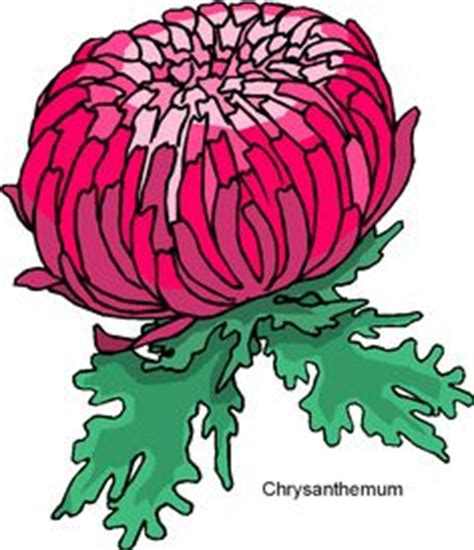 Essay on the chrysanthemums